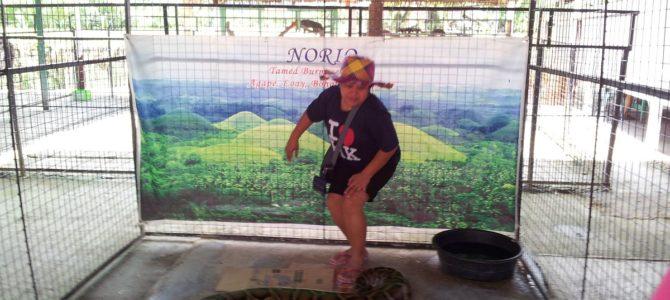 Tour to Bohol Python Sanctuary and Wildlife Park