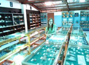 Nova sea shell museum bohol 3