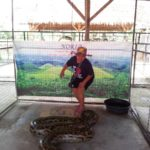 Bohol tour packages bohol philippines 091