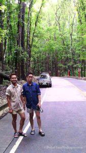 Bohol tour packages bohol touristas philippines 093