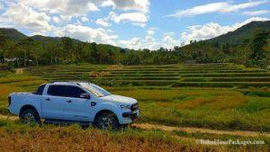 Bohol tour packages bohol touristas philippines 103