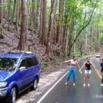 Bohol tour packages bohol touristas philippines 190