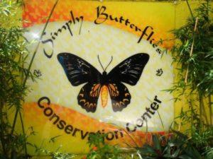 Butterfly garden at bilar