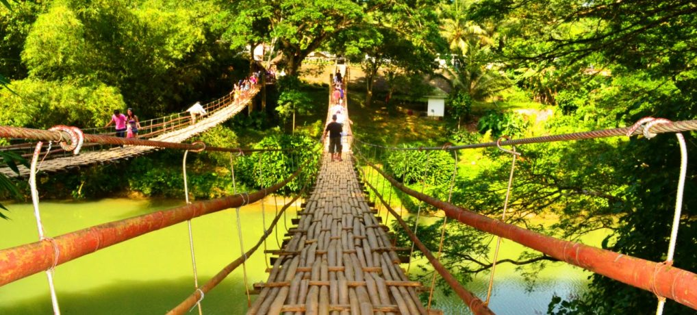 Tour to Bamboo Hanging Bridge