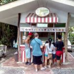 Icecream at the bohol bee farm