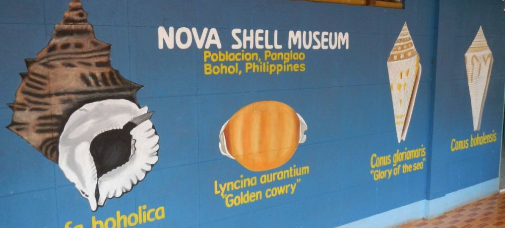 Tour to the Panglao Bohol Nova Sea Shell Museum