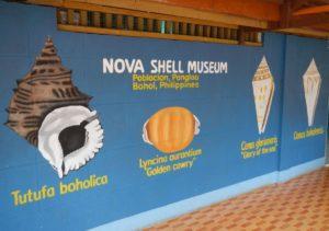Nova shell musiem