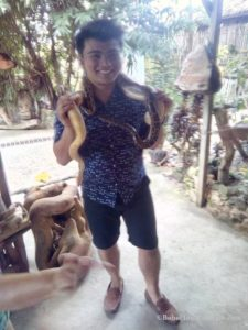 Smile with the pythons 4
